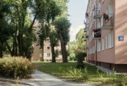 Naprawa ciągów pieszych oraz rewitalizacja terenów zielonych