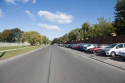 Usprawnienia rowerowe oraz nowe drzewa na Młynowie