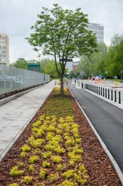 Stary Mokotów: chodniki wolne od rowerów!