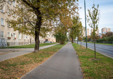 Budowa drogi rowerowej wzdłuż ul. Ostrobramskiej