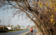 Budowa ciągu pieszo-rowerowego wzdłuż ul. Drewny
